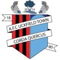 AFC Uckfield